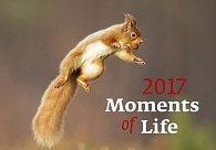 Kalendář nástěnný 2017 - Moments of Life