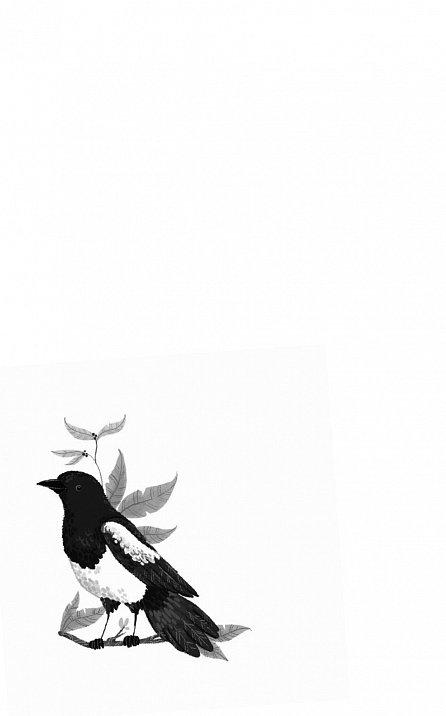 Náhled Kouzelné ptačí království 1: Spící kolibříci