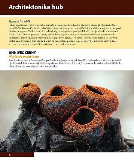 Náhled Pozoruhodný svět hub