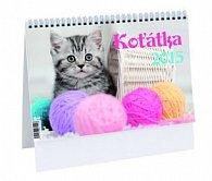 Koťátka - stolní kalendář 2015