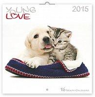 Kalendář 2015 - Young Love Koťata & Štěňata - nástěnný (GB, DE, FR, IT, ES, NL)