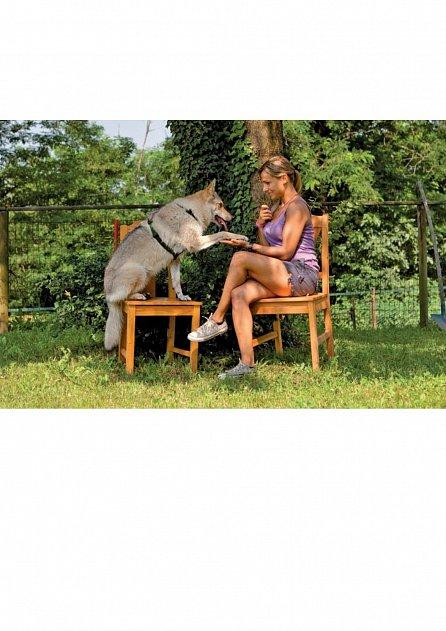 Náhled Dělej to po mně - Jak se psi učí napodobováním + DVD