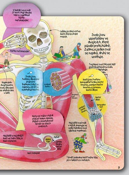 Náhled Jak funguje lidské tělo - Více než 50 odklápěcích okének