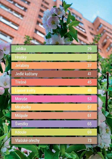 Náhled Jedlé město - Vyjděte do ulic! 36 zdraví prospěšných rostlin hned za humny a přes 100 receptů, díky nimž ušetříte a které vám udělají radost