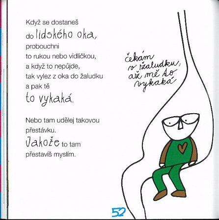 Náhled Jak přežít v kostce - Dětská příručka pro dospělé