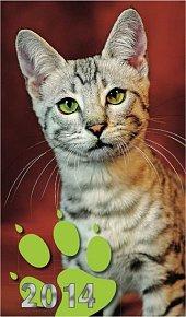 Diář 2014 - Kočky - týdenní kapesní (ČES, SLO, MAĎ, POL, RUS, ANG)
