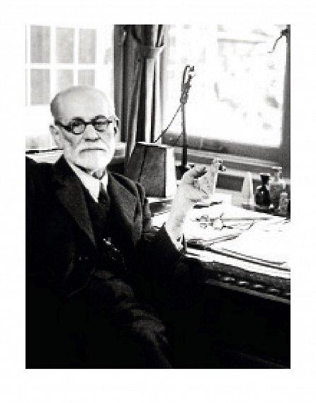 Náhled Freud