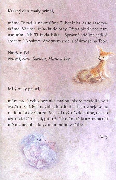 Náhled Pexeso - Malý princ