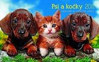 Kalendář 2011 - Psi a kočky se zvířecími jmény (23,1x14,5) stolní