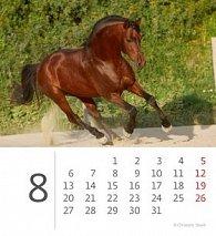 Kalendář stolní 2012 - Mini Horses