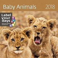 Kalendář nástěnný 2018 - Baby Animals