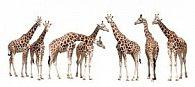 Záložka 3D žirafy II