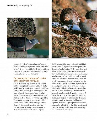 Náhled Krmíme ptáky - ale správně