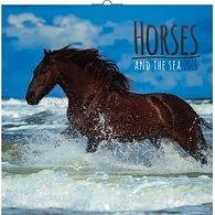 Kalendář nástěnný 2016 - Koně a moře, poznámkový  30 x 30 cm