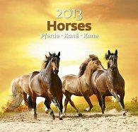 Kalendář nástěnný 2013 - Horses