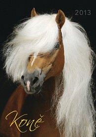 Koně - nástěnný kalendář 2013