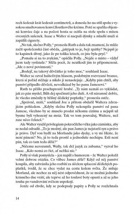 Náhled Fénix (DM 35)