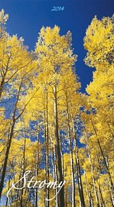 Stromy - nástěnný kalendář 2014
