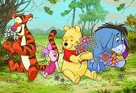 Medvídek Pú - puzzle 24 dílků