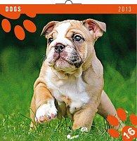 Kalendář 2013 poznámkový - Psi, 30 x 60 cm
