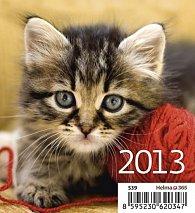 Kalendář stolní 2013 - Mini Kittens