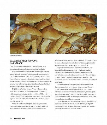 Náhled Pěstování hub