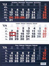 Tříměsíční kalendář 2008 - nástěnný kalendář