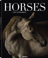 Tony Stromberg: Horses