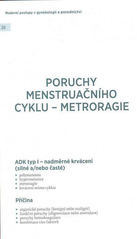 Náhled Moderní postupy v gynekologii a porodnictví