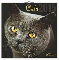Kalendář 2015 - Kočky - nástěnný (GB, DE, FR, IT, ES, NL)