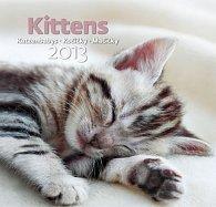 Kalendář nástěnný 2013 - Kittens
