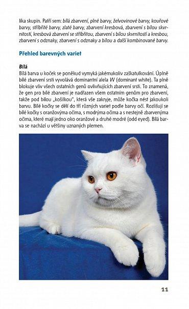 Náhled Kočky - příruční atlas