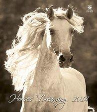 Kalendář 2014 - Horses Dreaming - nástěnný