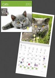 Cats - nástěnný kalendář 2013