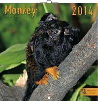 Kalendář 2014 - Opice - nástěnný poznámkový (ČES, SLO, MAĎ, POL, RUS, ANG)