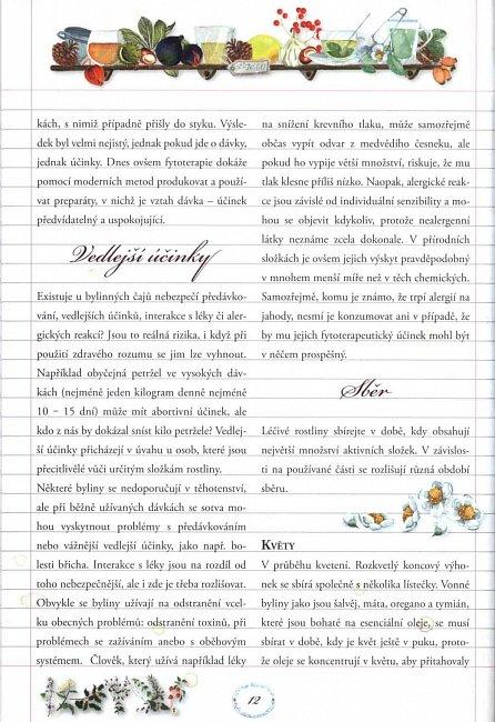 Náhled Encyklopedie bylin - jejich charakteristika a využití léčivých, vyživových, vonných a kosmetických vlastností
