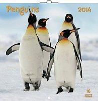 Kalendář 2014 - Tučňáci - nástěnný poznámkový (ANG, NĚM, FRA, ITA, ŠPA, HOL)