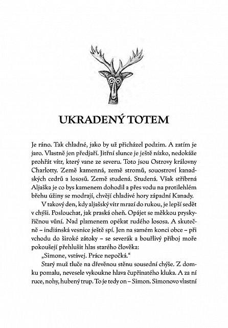 Náhled Ukradený totem