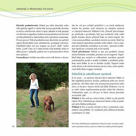 Náhled Úspěšný trénink dospělého psa - Šestistupňový výcvikový plán