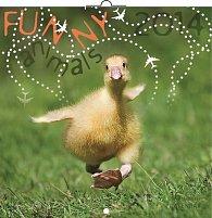 Kalendář 2014 - Funny Animals - nástěnný poznámkový (ČES, SLO, MAĎ, POL, RUS, ANG)
