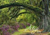 Aleje - nástěnný kalendář 2013