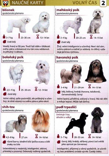 Náhled Nejoblíbenější plemena psů - Naučná karta