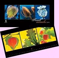 Small Miracles 2009 - nástěnný kalendář