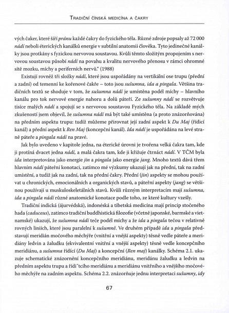Náhled Čakry a čínská medicína - Léčba a příčiny nemocí