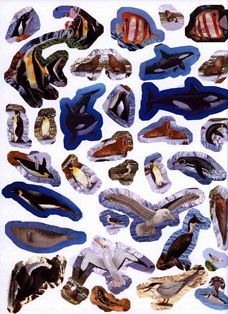 Náhled 1000 zvířátek k vyhledání
