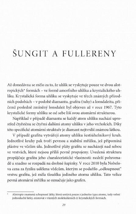 Náhled Šungit - Kámen života