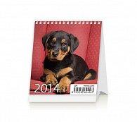 Kalendář 2014 - Mini Puppies - stolní