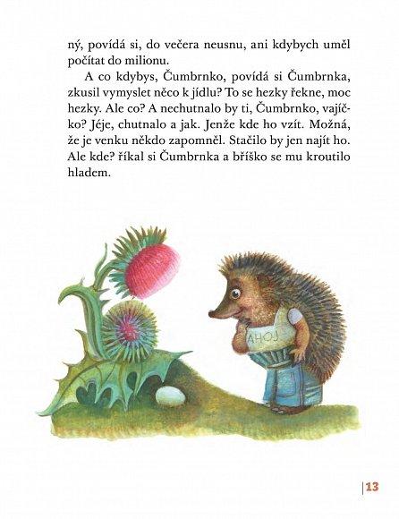 Náhled Bráška je taky ježek