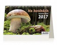 Kalendář stolní 2017 - Na houbách