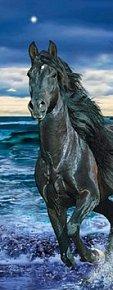 Záložka 3D černý kůň